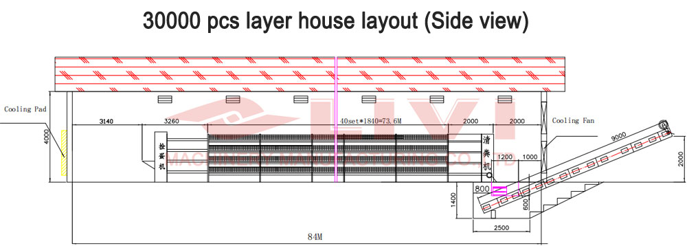 Chicken house design drawing for 30000 layers